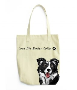 border collie color